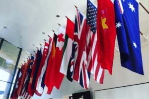 Beasley Intercultural Twinning Case Study